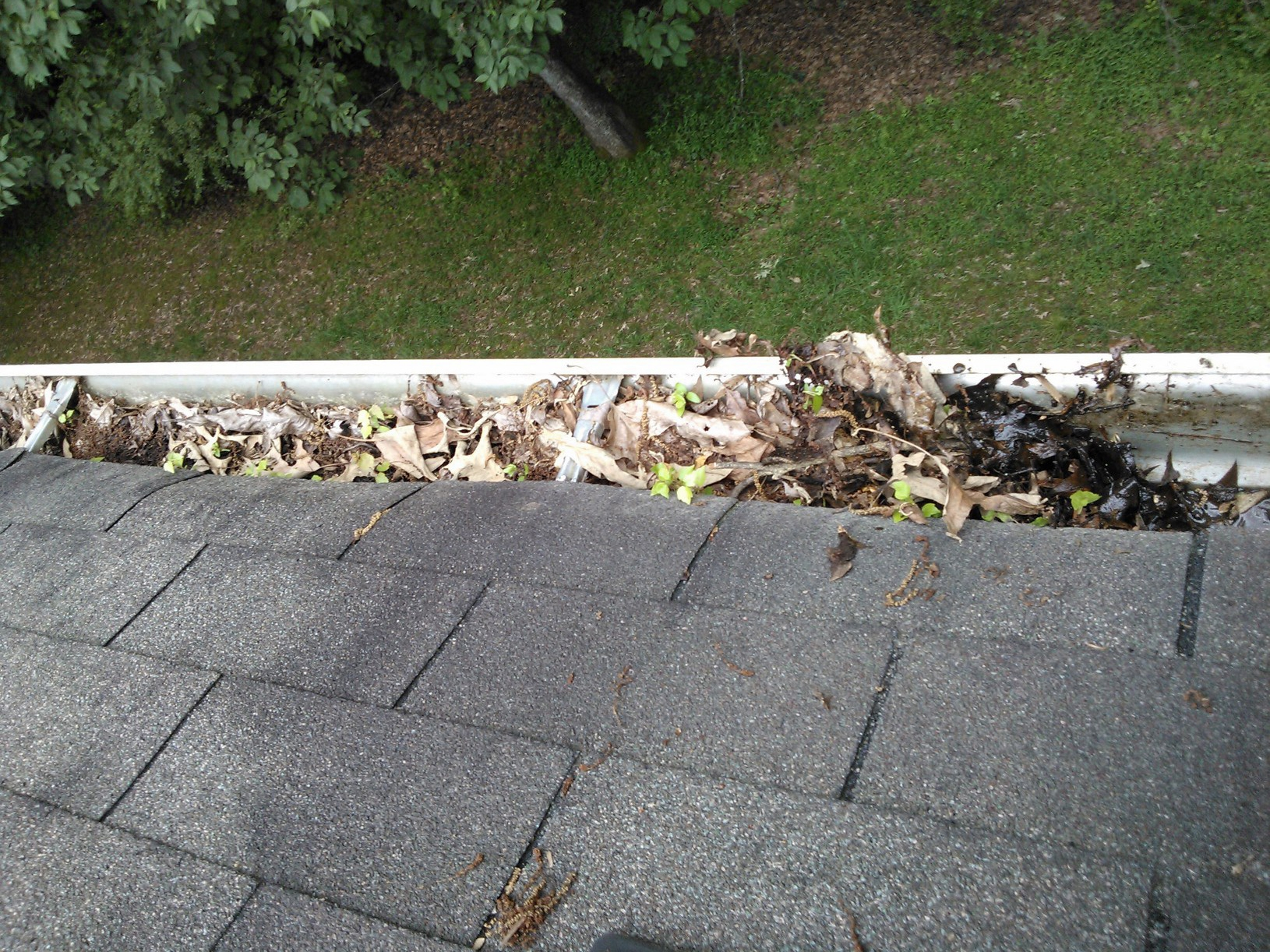 Professional Gutter Cleaning Tattershall